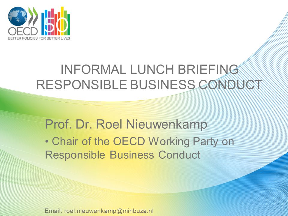 INFORMAL LUNCH BRIEFING RESPONSIBLE BUSINESS CONDUCT Prof.