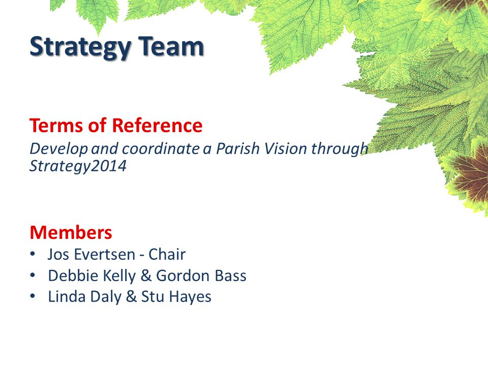 Terms of Reference Develop and coordinate a Parish Vision through Strategy2014 Members Jos Evertsen - Chair Debbie Kelly & Gordon Bass Linda Daly & Stu Hayes