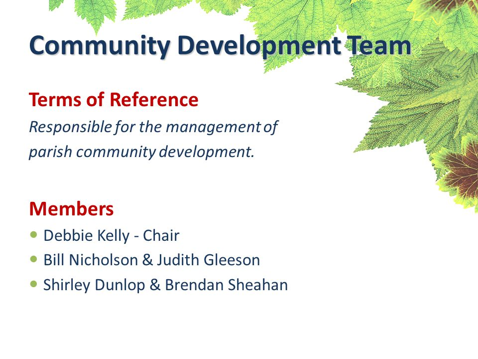 Terms of Reference Responsible for the management of parish community development.