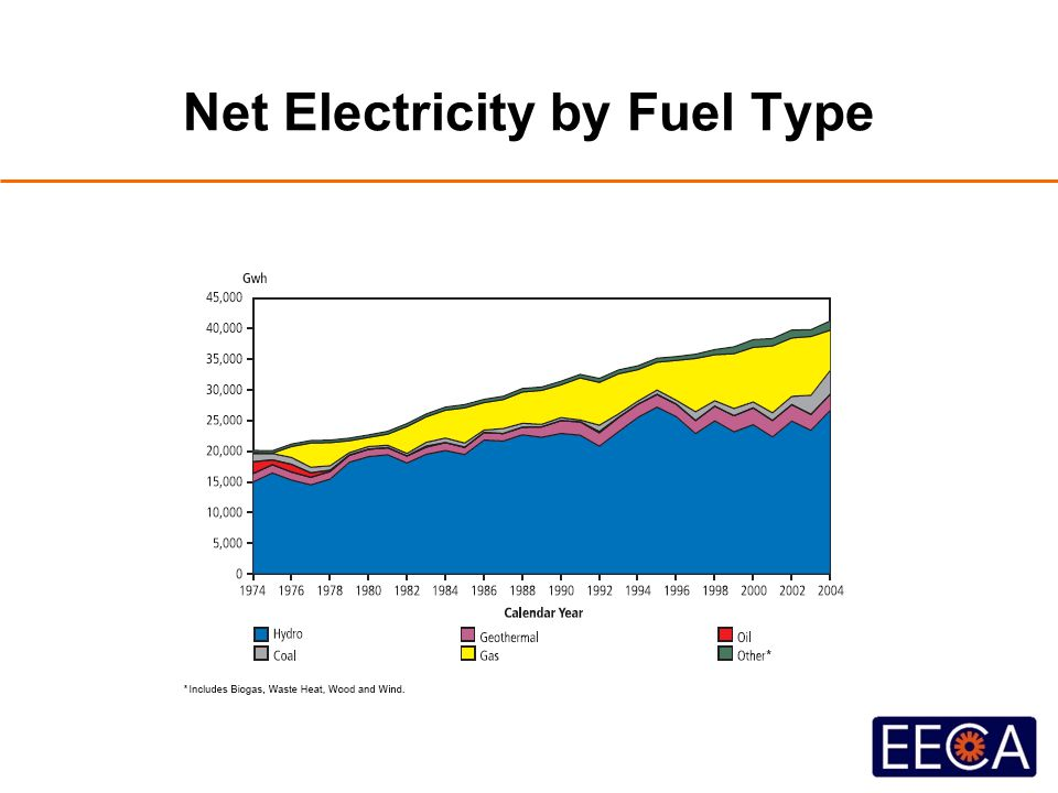 Net Electricity by Fuel Type