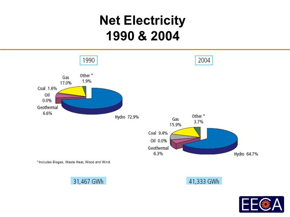 Net Electricity 1990 & 2004