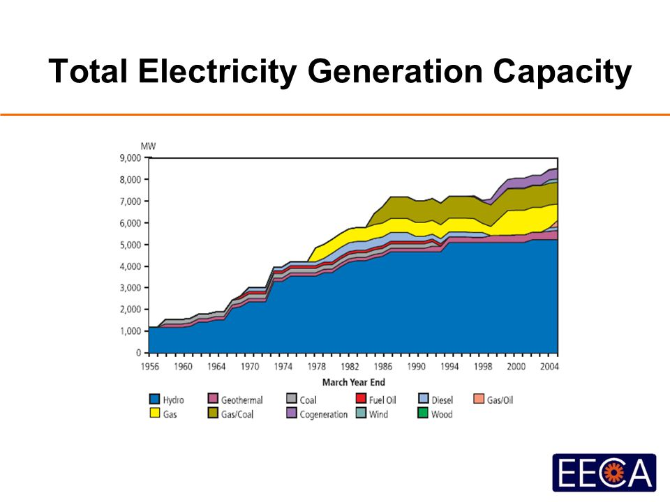 Total Electricity Generation Capacity