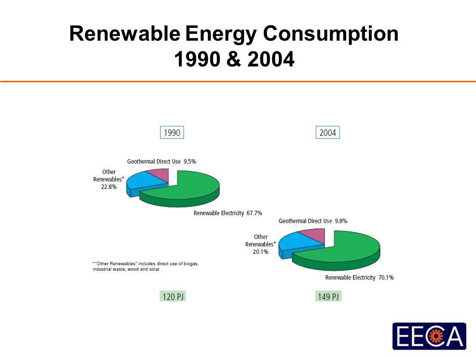 Renewable Energy Consumption 1990 & 2004