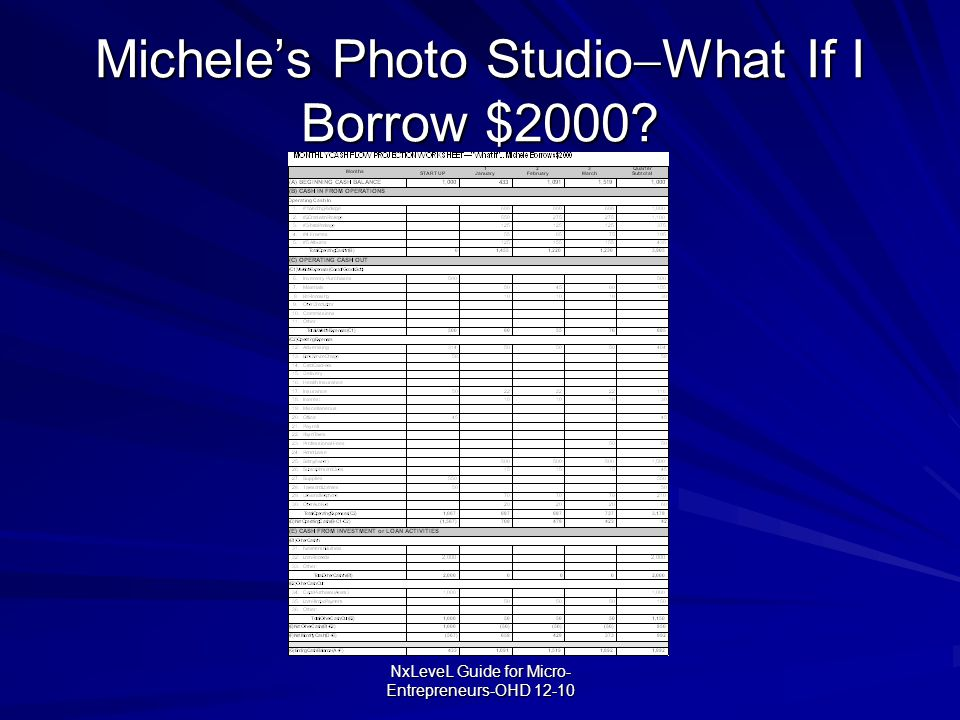 NxLeveL Guide for Micro- Entrepreneurs-OHD 12-10 Michele's Photo Studio  What If I Borrow $2000?