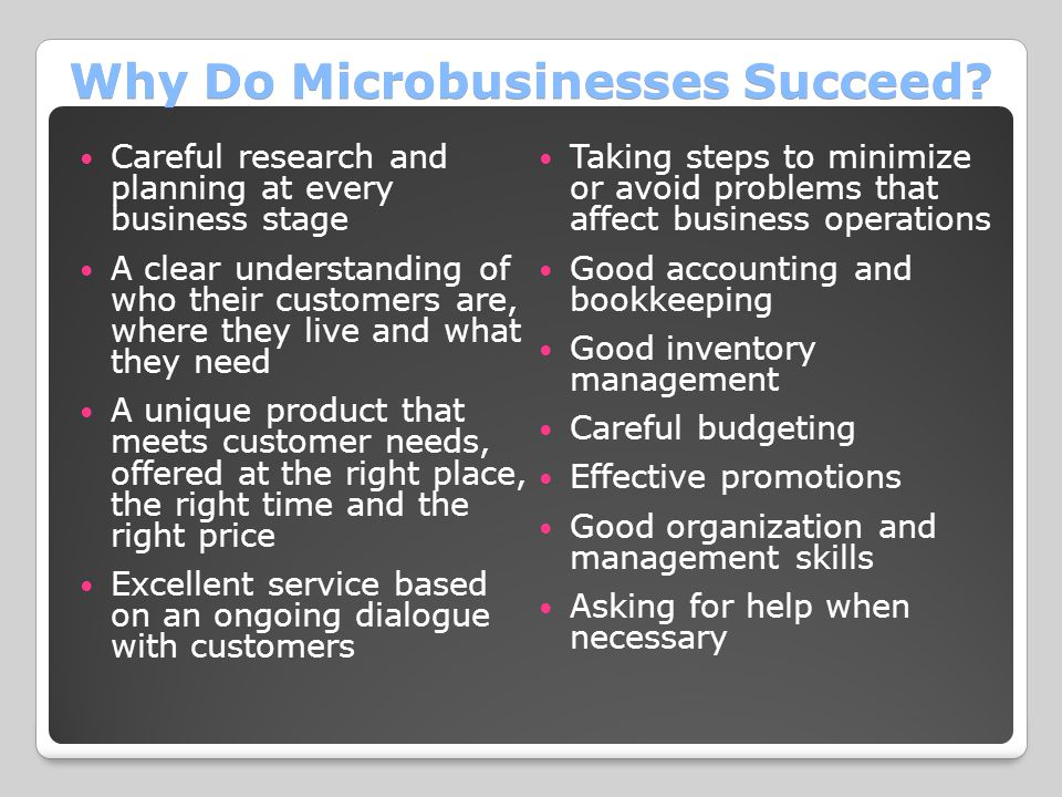Why Do Microbusinesses Succeed.