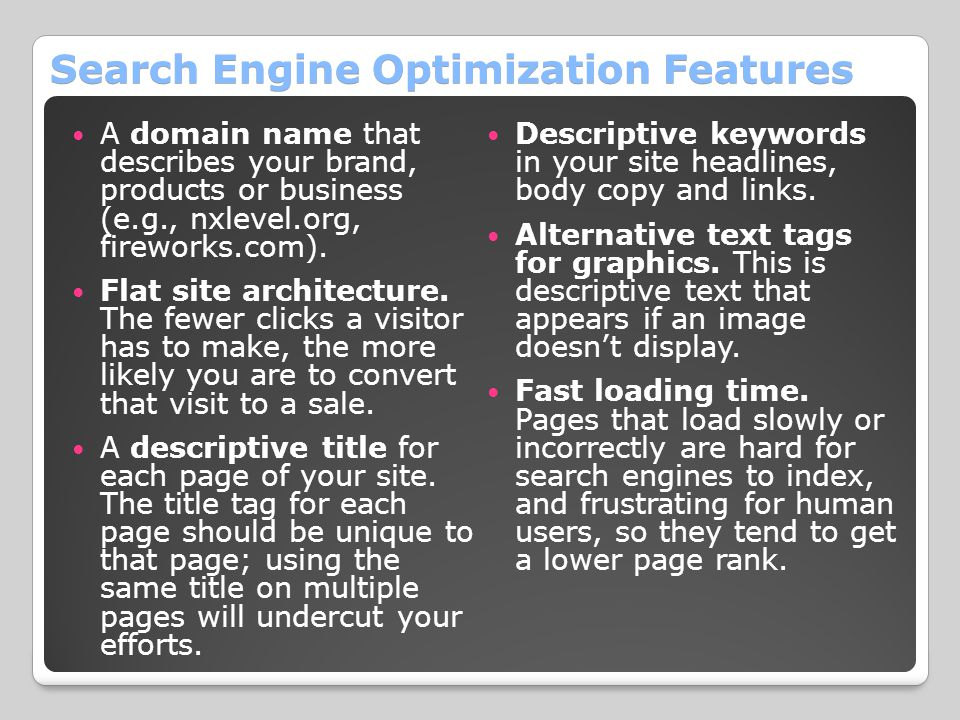 Search Engine Optimization Features A domain name that describes your brand, products or business (e.g., nxlevel.org, fireworks.com). Flat site archit