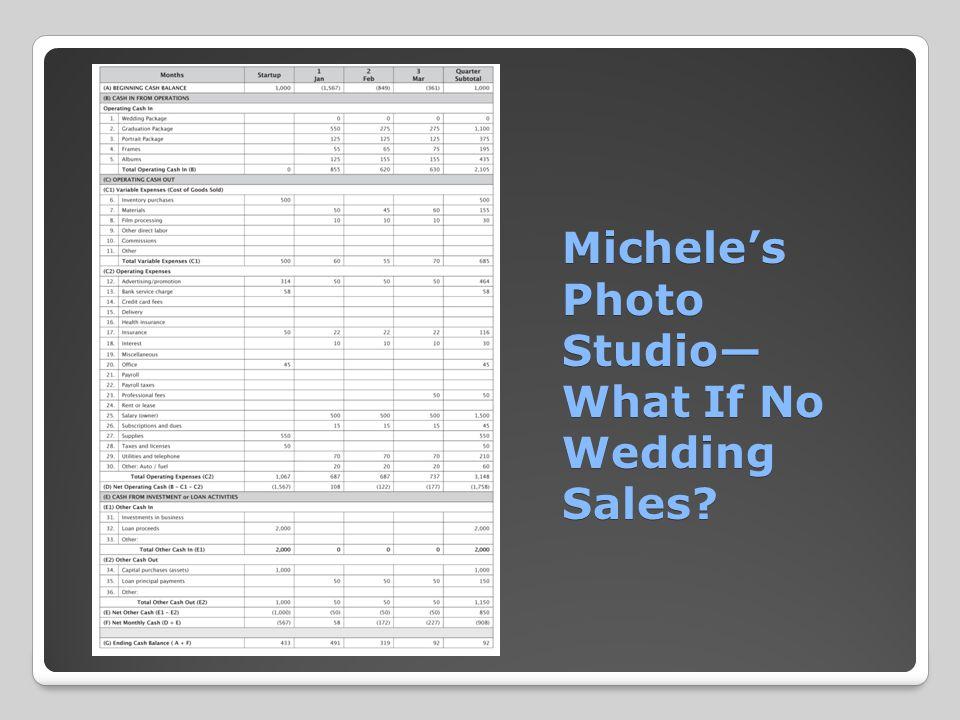 Michele's Photo Studio— What If No Wedding Sales? Michele's Photo Studio— What If No Wedding Sales?