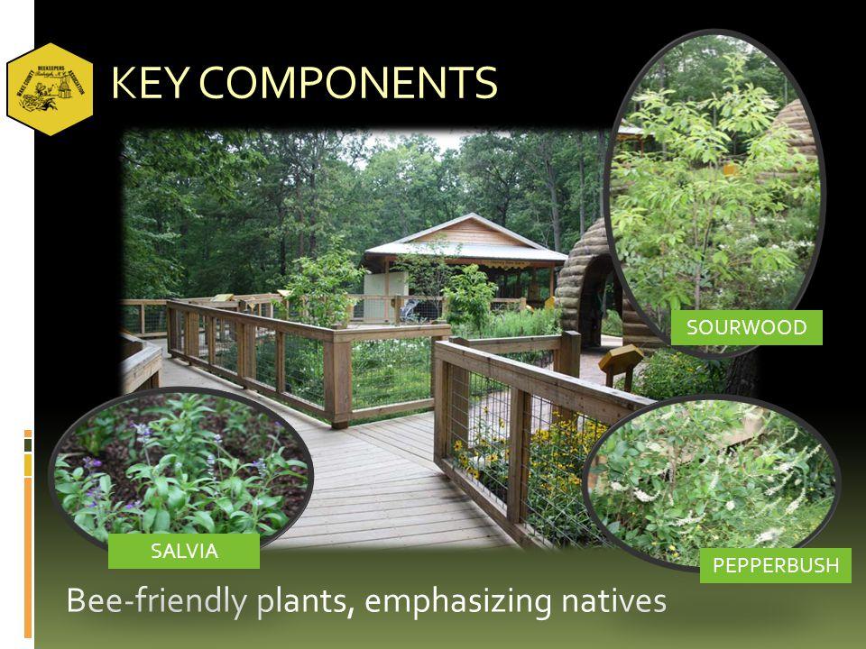 KEY COMPONENTS Bee-friendly plants, emphasizing natives SOURWOOD PEPPERBUSH SALVIA