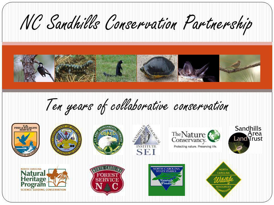 Ten years of collaborative conservation NC Sandhills Conservation Partnership