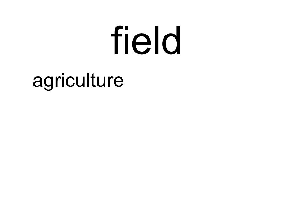 field agriculture