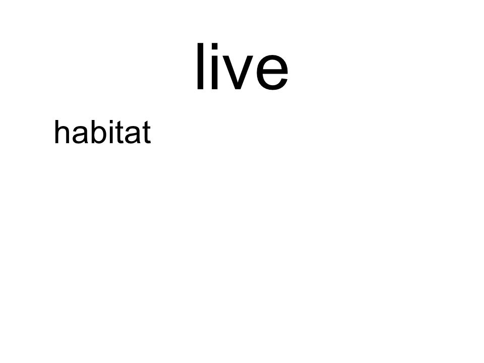 live habitat