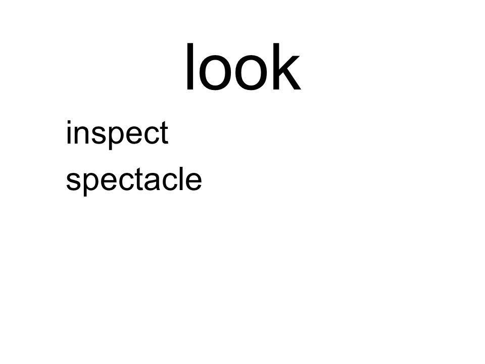 look inspect spectacle