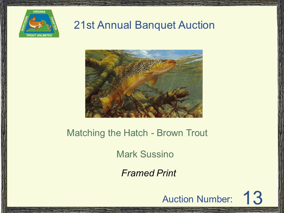 Auction Number: 21st Annual Banquet Auction 13 Matching the Hatch - Brown Trout Mark Sussino Framed Print