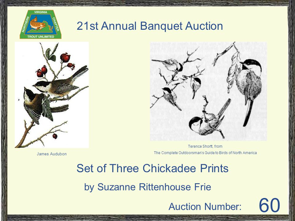 Auction Number: 21st Annual Banquet Auction 60 Set of Three Chickadee Prints by Suzanne Rittenhouse Frie James Audubon Terence Shortt, from The Complete Outdoorsman's Guide to Birds of North America