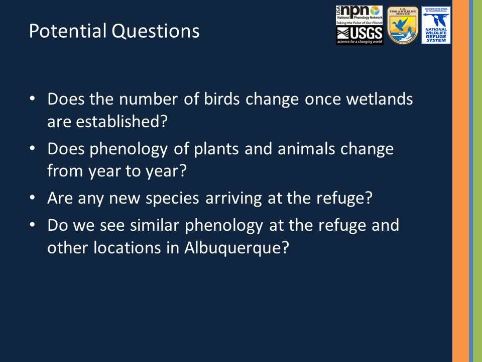 Potential Questions Does the number of birds change once wetlands are established.