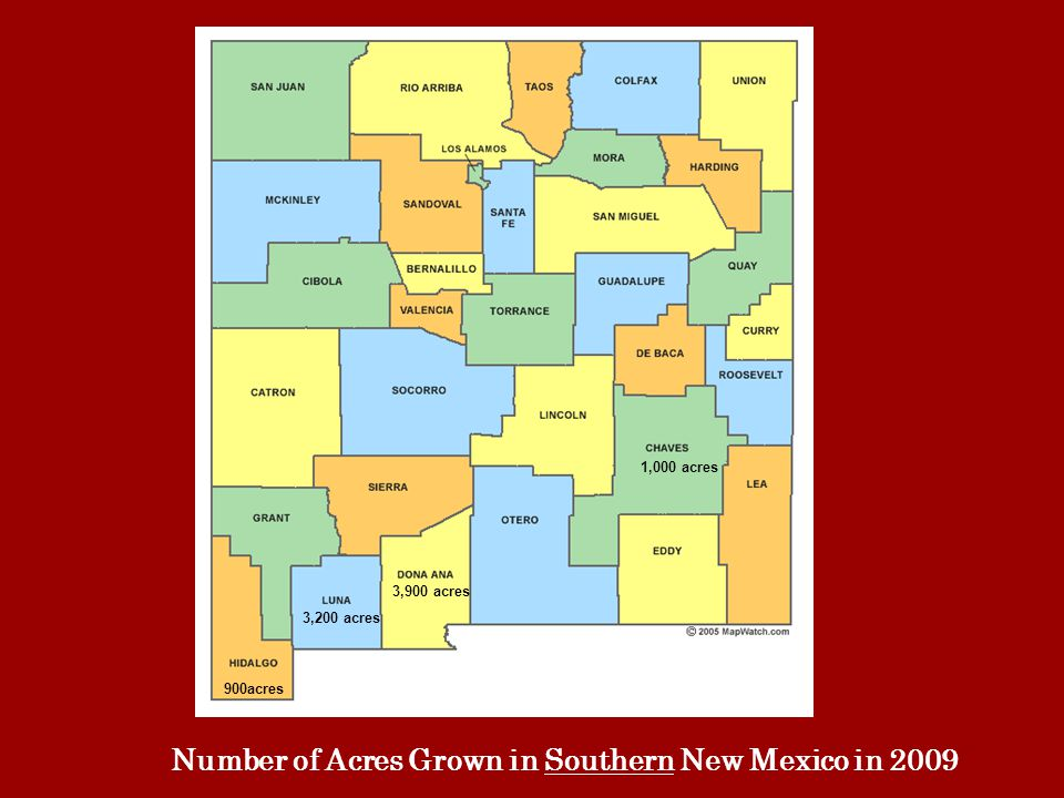 3,900 acres 1,000 acres 3,200 acres 900acres Number of Acres Grown in Southern New Mexico in 2009