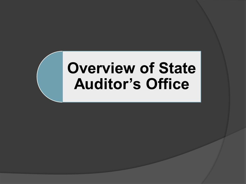 Overview of State Auditor's Office