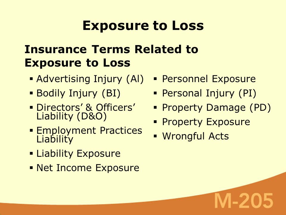 Insurance Terms Related to Exposure to Loss Exposure to Loss  Advertising Injury (Al)  Bodily Injury (BI)  Directors' & Officers' Liability (D&O)  Employment Practices Liability  Liability Exposure  Net Income Exposure  Personnel Exposure  Personal Injury (PI)  Property Damage (PD)  Property Exposure  Wrongful Acts