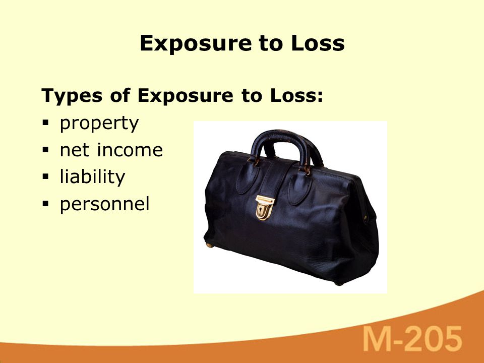 Types of Exposure to Loss:  property  net income  liability  personnel Exposure to Loss