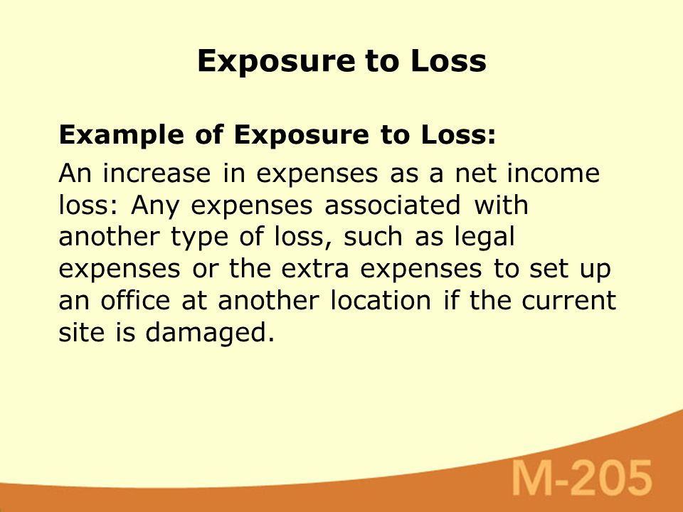 Example of Exposure to Loss: An increase in expenses as a net income loss: Any expenses associated with another type of loss, such as legal expenses or the extra expenses to set up an office at another location if the current site is damaged.