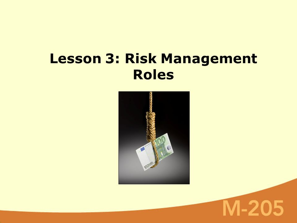 Lesson 3: Risk Management Roles
