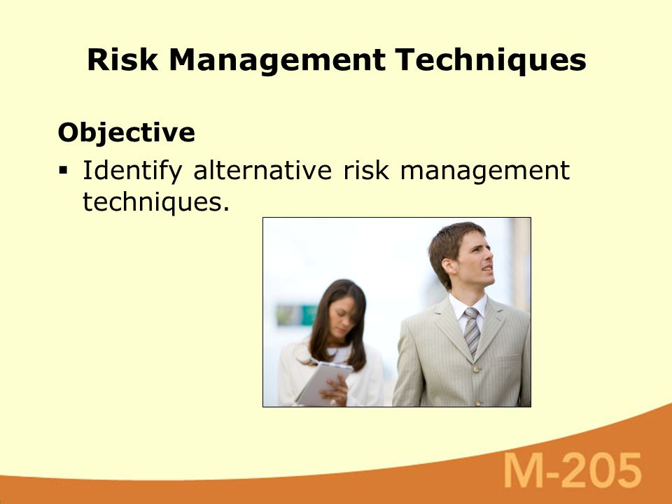 Objective  Identify alternative risk management techniques. Risk Management Techniques