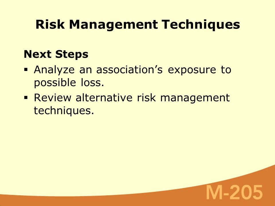 Next Steps  Analyze an association's exposure to possible loss.  Review alternative risk management techniques. Risk Management Techniques