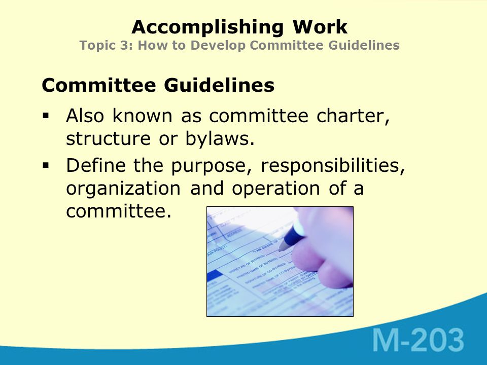 Accomplishing Work Topic 3: How to Develop Committee Guidelines Committee Guidelines  Also known as committee charter, structure or bylaws.