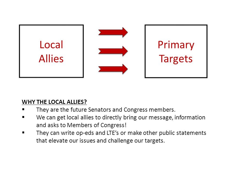 Local Allies Primary Targets WHY THE LOCAL ALLIES?  They are the future Senators and Congress members.  We can get local allies to directly bring ou