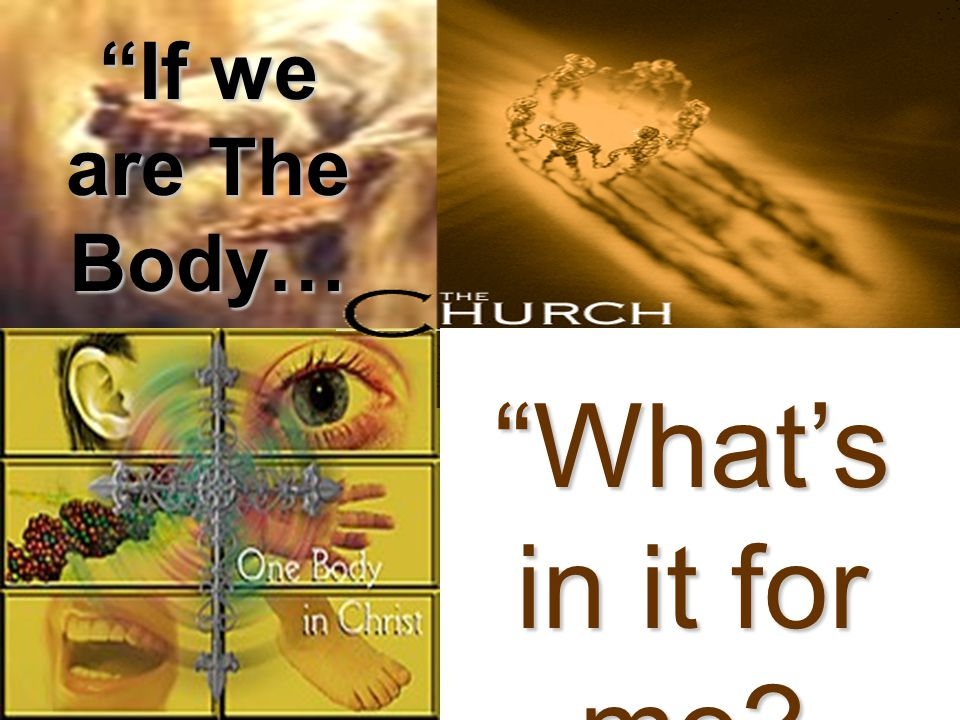 in heaven Psalms 119:89 - For ever, O LORD, thy Word is settled in heaven.