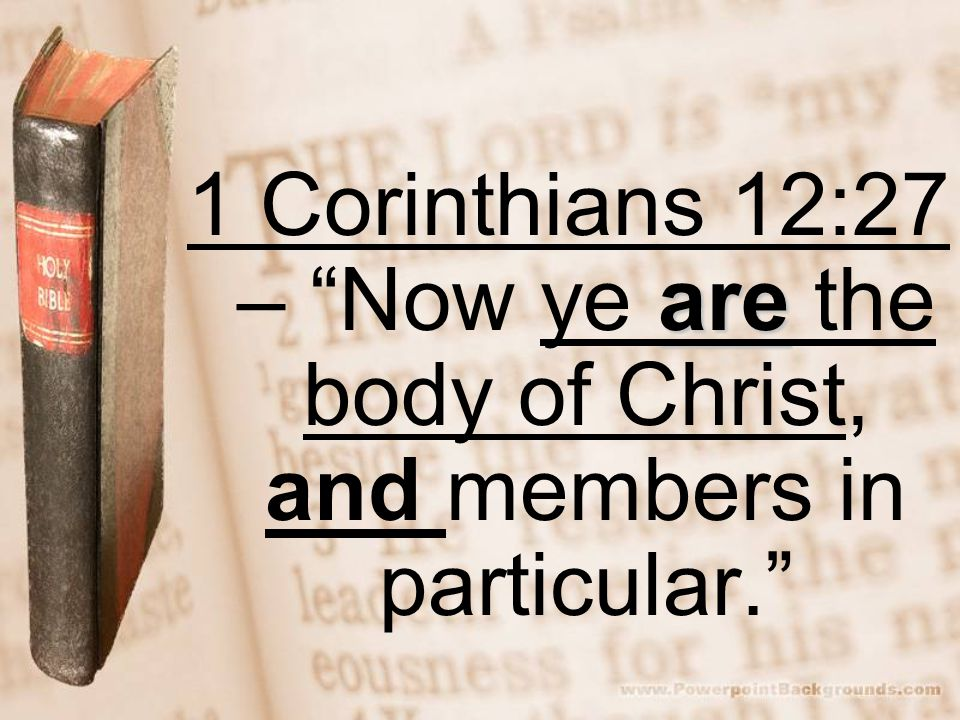 are 1 Corinthians 12:27 – Now ye are the body of Christ, and members in particular.