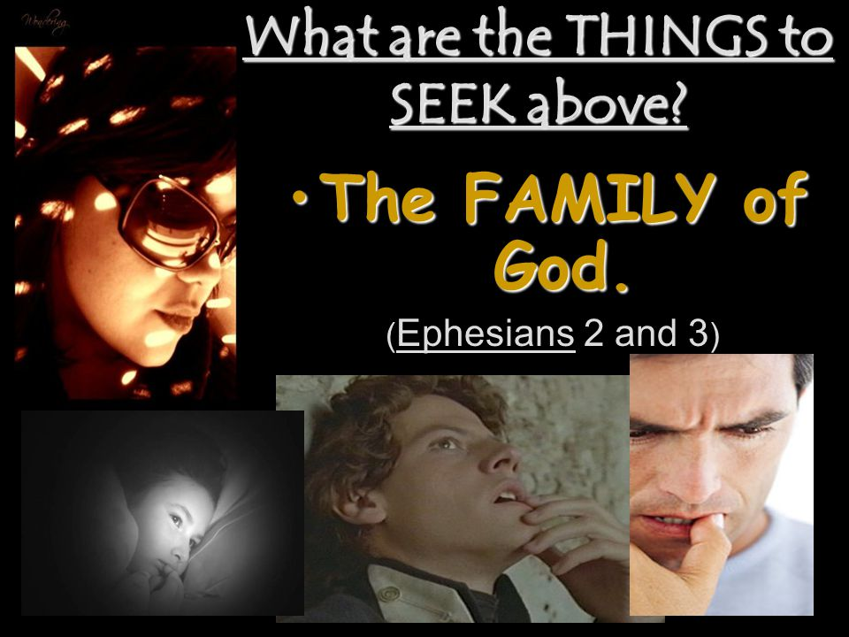 What are the THINGS to SEEK above The FAMILY of God.The FAMILY of God. ( Ephesians 2 and 3 )
