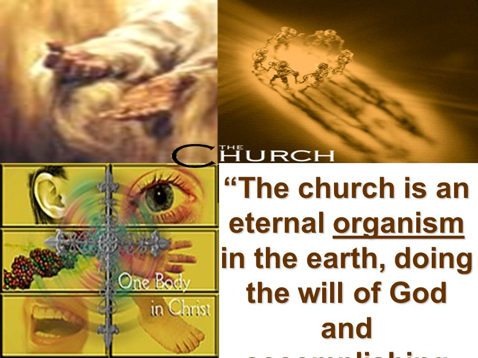The church is an eternal organism in the earth, doing the will of God and accomplishing the purpose of God.