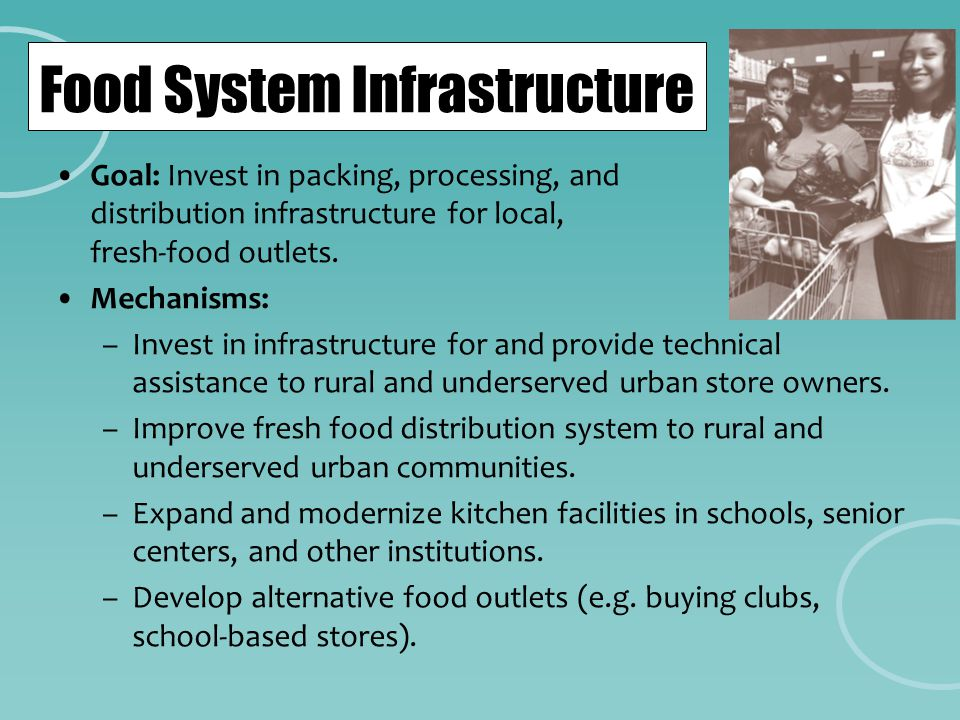 Food System Infrastructure Goal: Invest in packing, processing, and distribution infrastructure for local, fresh-food outlets. Mechanisms: –Invest in