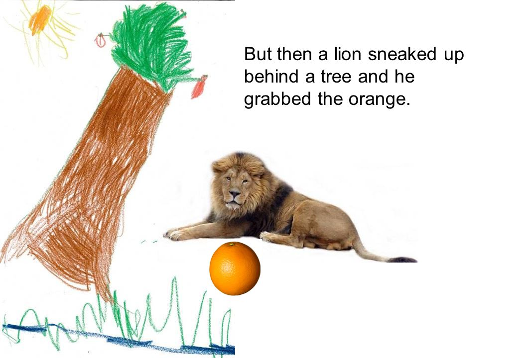 But then a lion sneaked up behind a tree and he grabbed the orange.