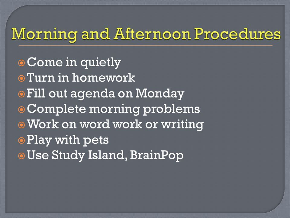  Come in quietly  Turn in homework  Fill out agenda on Monday  Complete morning problems  Work on word work or writing  Play with pets  Use Stu
