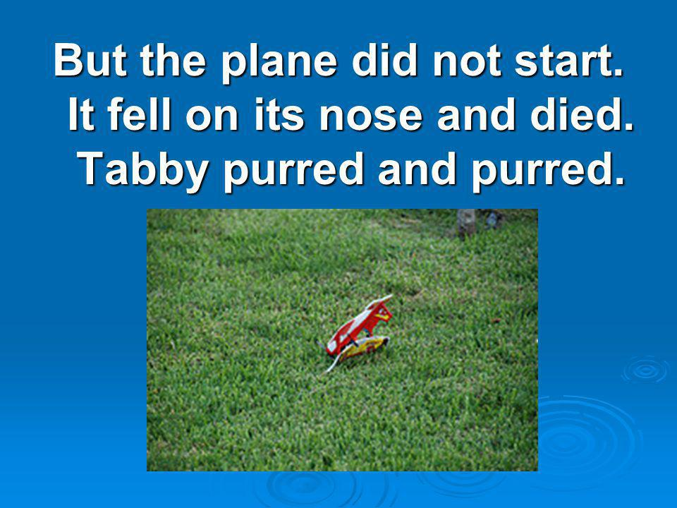 But the plane did not start. It fell on its nose and died. Tabby purred and purred.