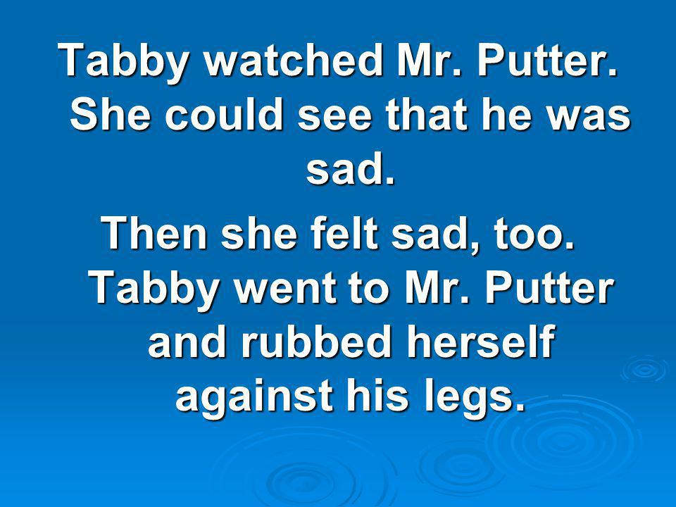 Tabby watched Mr. Putter. She could see that he was sad. Then she felt sad, too. Tabby went to Mr. Putter and rubbed herself against his legs.