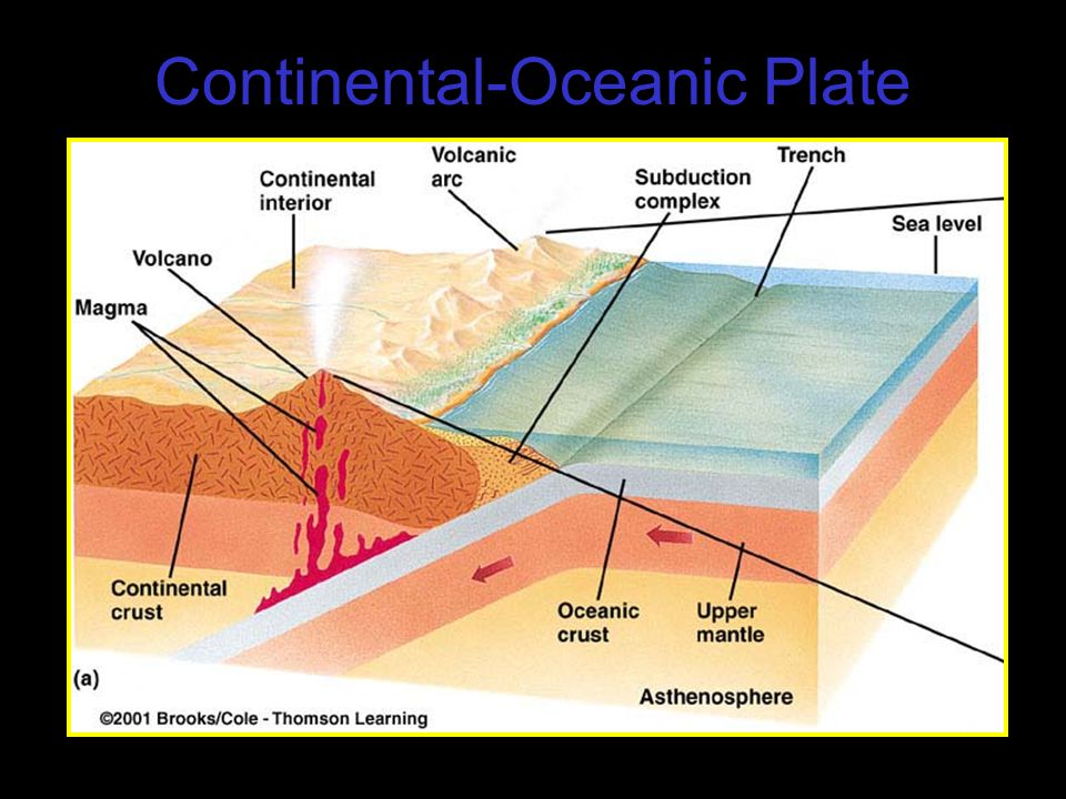 Continental-Oceanic Plate