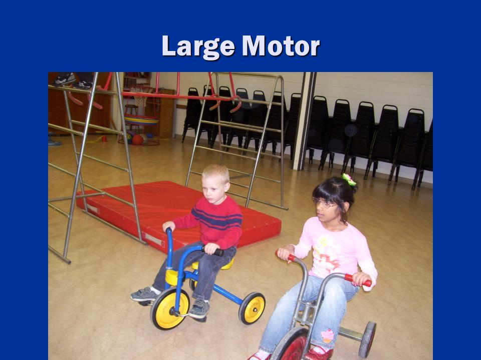 Large Motor