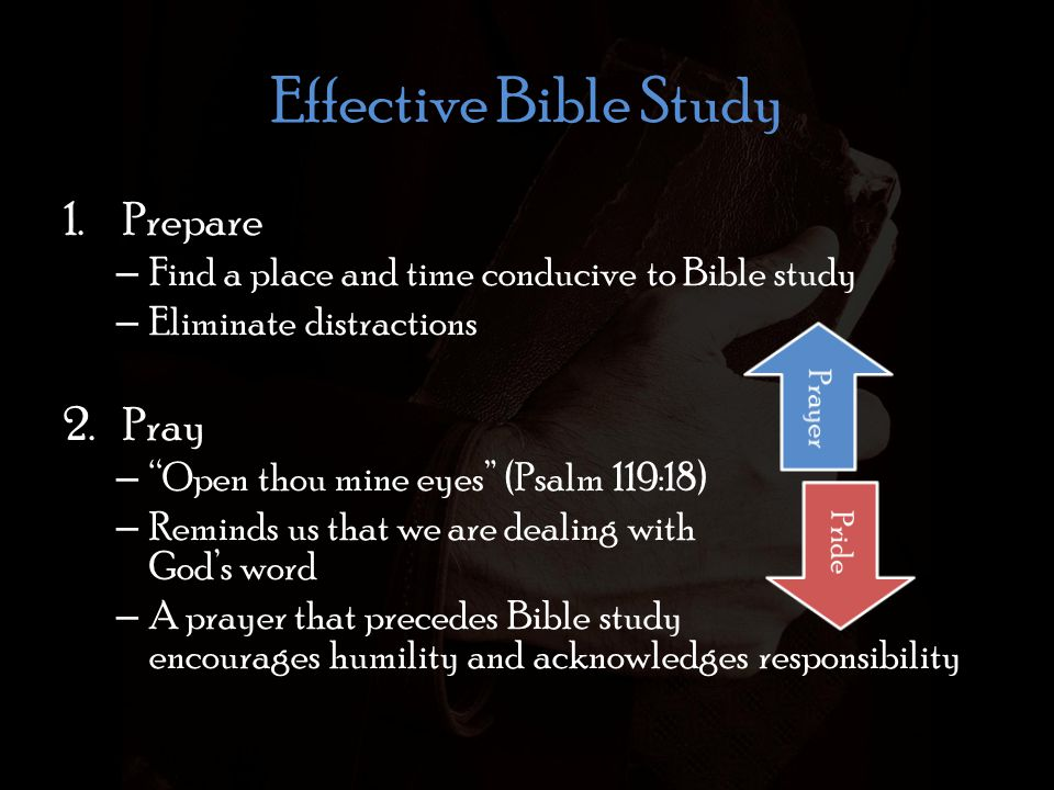 Effective Bible Study 3.Read (I Timothy 4:13) Psalm 19:10 More to be desired are they than gold, yea, than much fine gold: sweeter also than honey and the honeycomb.