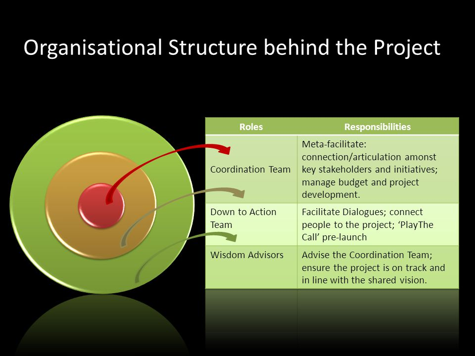 Organisational Structure behind the Project