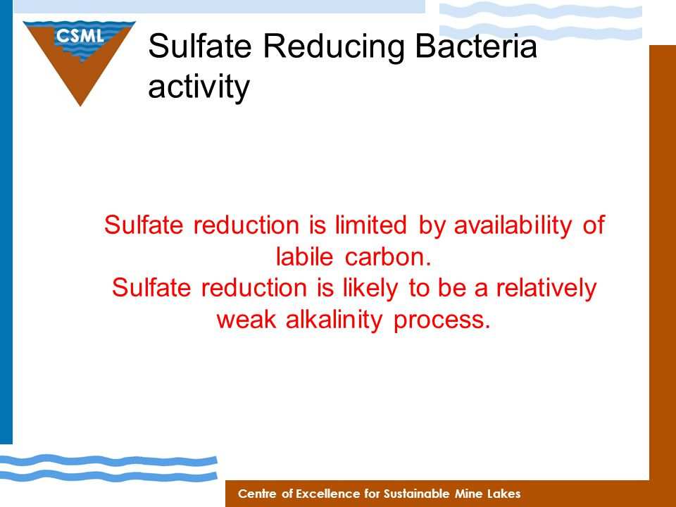 Centre of Excellence for Sustainable Mine Lakes Sulfate Reducing Bacteria activity Sulfate reduction is limited by availability of labile carbon.