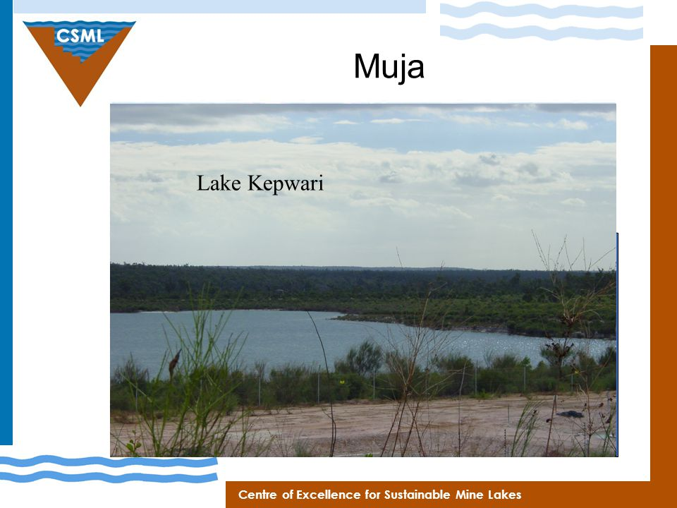 Centre of Excellence for Sustainable Mine Lakes Muja 180 m ~3 km ~1.5 km Fill Time ~50 yrs Final Volume >200 GL Lake Kepwari