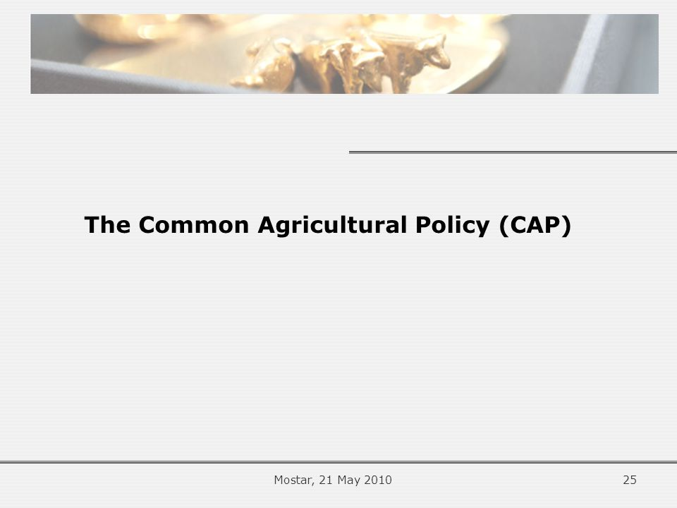 The Common Agricultural Policy (CAP) 25Mostar, 21 May 2010