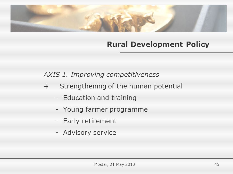 Rural Development Policy AXIS 1.