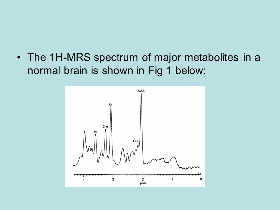 Major Metabolites in the Brain NAA Choline Creatine Lactate Glutamine Lipid Myo-Inositol