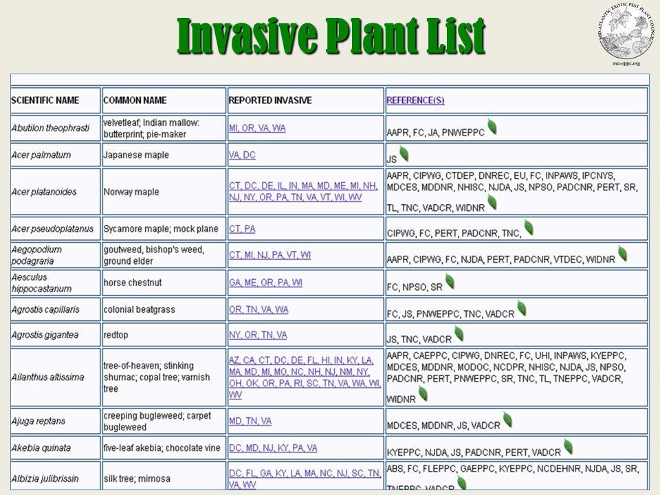 Invasive Plant Tutorial