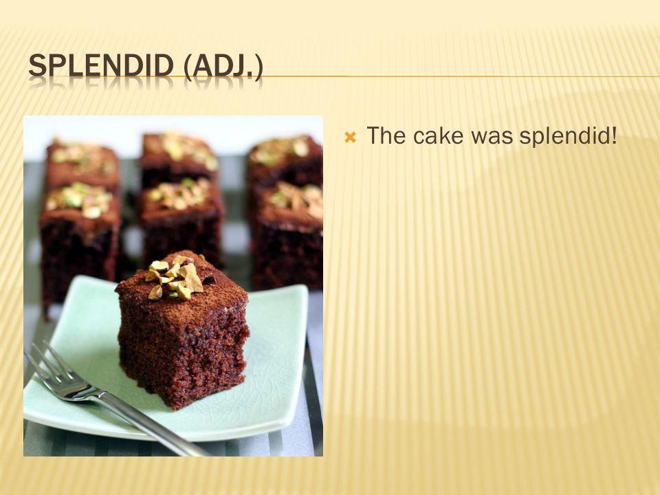  The cake was splendid!