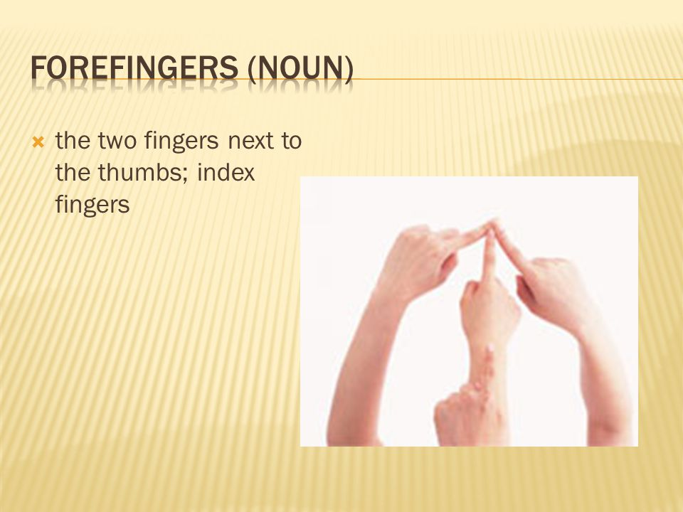  the two fingers next to the thumbs; index fingers